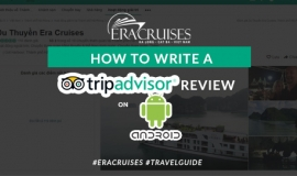 How to write a tripadvisor review on Android